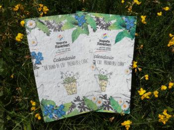 Copertina calendario con semi di fiori di campo